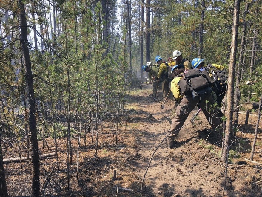 In this Thursday, Aug. 18, 2016 photo, provided by the National Forest Service, firefighters work to build a containment line around a wildfire burning on the western edge of Yellowstone National Park in Montana. Firefighters have checked the growth of a wildfire burning on the west side of Yellowstone National Park. It has burned nearly 200 acres. Officials say they have contained about 20 percent of the fire and expect to make more progress over the next couple of days. (Derek Wittenberg/National Forest Service via AP)