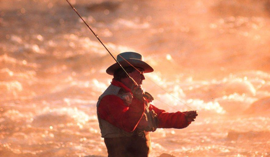 FILE - In this undated file photo, a fly fisherman casts his line as early morning mist rises above the Boise River, east of Boise, Idaho. Idaho, Oregon and Washington have shutdown online sales of hunting and fishing licenses amid concerns a vendor's computer system has been hacked and personal information is at risk. (AP Photo/Troy Maben, File)