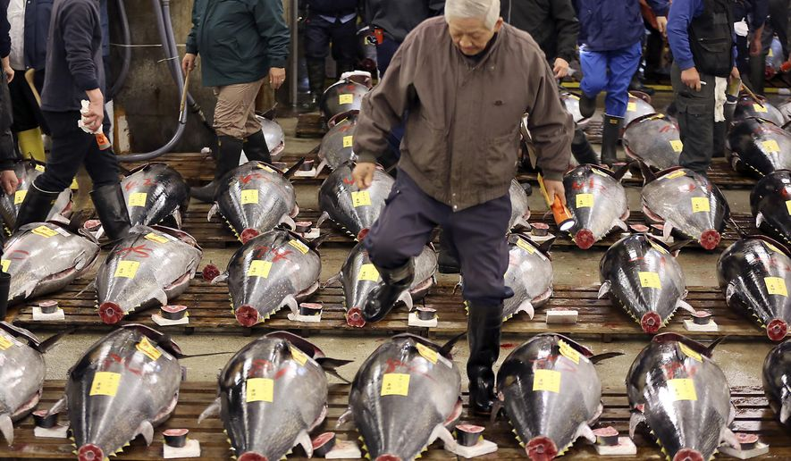FILE - In this Jan. 5, 2016, file photo, a prospective buyer inspects the quality of fresh tuna before the first auction of the year at Tsukiji fish market in Tokyo. A newly elected leader of Tokyo has postponed a plan to relocate the world's biggest fish market, one of the city's most famous landmarks.  Gov. Yuriko Koike announced Wednesday, Aug. 31, 2016,  that she would decide on a date only after an environmental assessment of the new site is completed in January. The move had been scheduled to take place in early November.  (AP Photo/Eugene Hoshiko, File)