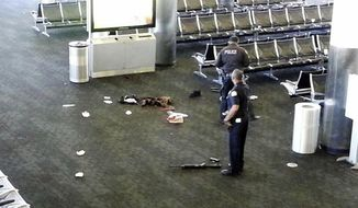 In this Nov. 1, 2013, file photo provided to the AP, which has been authenticated based on its contents and other AP reporting, police officers stand near a weapon inside Terminal 2 at Los Angeles International Airport after a gunman opened fire in the terminal, killing one person and wounding three others. Paul Ciancia, the gunman behind the shooting rampage at Los Angeles International Airport three years ago, has agreed to plead guilty to all counts in a deal that spares him the death penalty. (AP Photo, File)