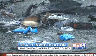 A Ferguson, Missouri, protest leader was found dead inside the charred remains of a car in St. Louis on Tuesday, September 6, 2016. Darren Seals, 29, was also suffered gunshot wound. (KMOV-TV 4 screenshot)