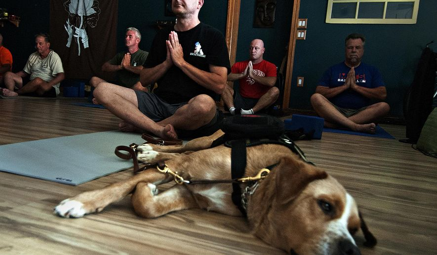 In a Tuesday, Sept. 13, 2016 photo, Todd Oslen and his service dog Hager take a yoga class at Open Center Yoga in Bristol, Pa. Olsen just completed training with the organization, K9 for Warriors, which connects veterans with PTSD with service dogs. (Kim Weimer/Bucks County Courier Times via AP)