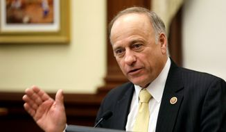 Republican U.S. Rep. Steve King of Iowa speaks in Des Moines, in this Jan. 23, 2014, file photo. (AP Photo/Charlie Neibergall, File)