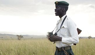 In this Friday, Sept. 23, 2016 photo, park ranger Denis Odong stands in an open area in Kidepo Valley National Park in northern Uganda. Although a global wildlife summit banned all trade of pangolins, doubts remain whether that will stop their illegal traffic in Africa fueled by growing demand from Asian consumers, particularly in China. (AP Photo/Helene Franchineau)