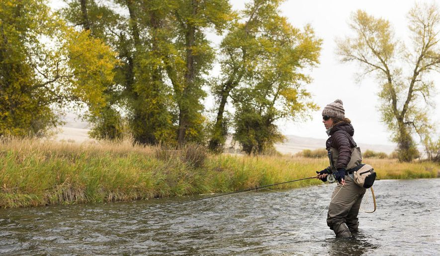 Erin McCleary fishes a small stream near Butte, Mont., in this Oct., 2015 photo.  With fall comes some of the best fly-fishing of the year where anglers will find a reprieve from the summer crowds, chances at big trout and some fine dry fly fishing opportunities. (Bozeman Daily Chronicle via AP)