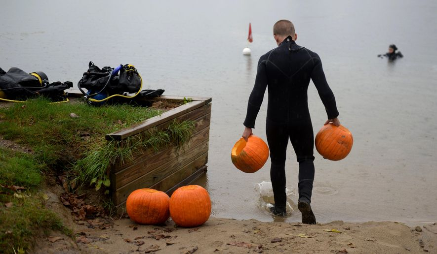 In this Sunday, Oct. 16, 2016 photo, a participant in The Dive Shop's 21st annual underwater pumpkin carving prepares to get into the water at Otter Lake, Mich. (Callaghan O'Hare/The Flint Journal-MLive.com via AP)