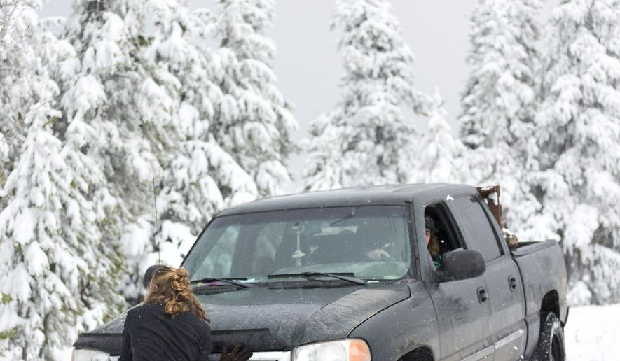 Mikey Harris helps push Brandon Haltom's stuck truck after an attempt to park closer to the dead pine trees on Shadow Mountain on Thursday, Oct. 6, 2016 near Kelly, Wyo. The truck was stuck for about an hour before they were able to free it. (Rugile Kaladyte /Jackson Hole News & Guide via AP)