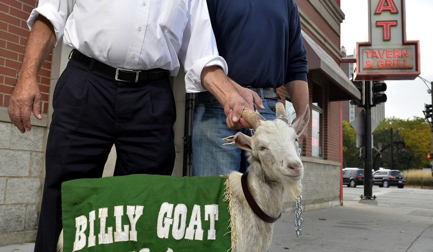 "FILE - In this Oct. 20, 2015 file photo, Billy Goat Tavern owners Sam Sianis, left, and his son Bill pose with ""Billy"" the goat outside their tavern on Madison Street in Chicago. In 1945 Sam's uncle, William, cast a curse over the Chicago Cubs for not letting him bring his billy goat into Game 4 of the World Series and declared they never would win the Series. As the Cubs participate in the 2016 World Series against the Cleveland Indians, the legend of the curse lives on. (AP Photo/Paul Beaty File)"