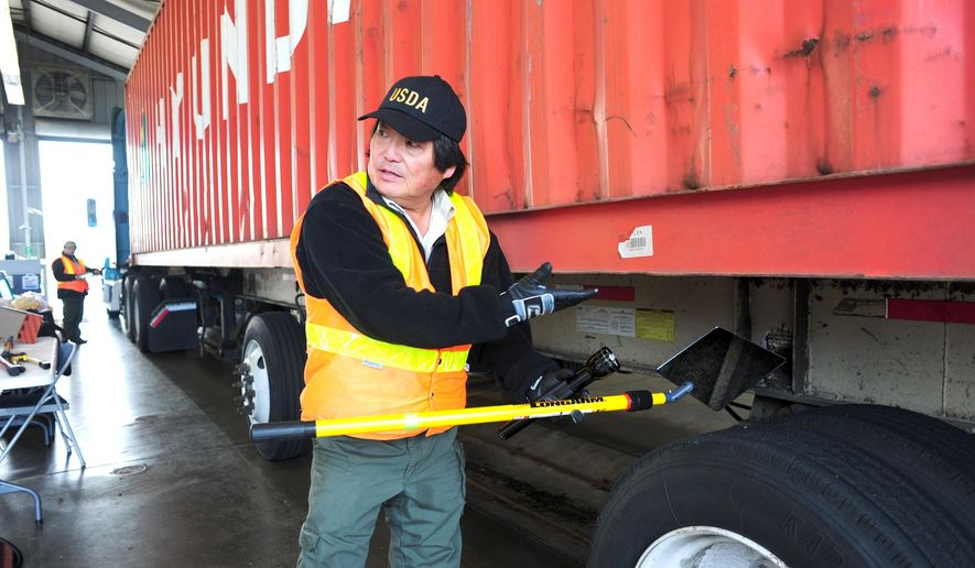 "In this Oct. 19, 2016 photo, Owen Shiozaki, USDA supervisor of the pest inspection team, use a long-handled mirror to look under the chassis of a semi-truck for signs of pests and invasive species near Bow, Wash., that he hopes to keep out of the United States. ""It's not just a Washington problem,"" he said. ""We're trying to prevent them from spreading all over the country."" (Brandy Shreve/Skagit Valley Herald via AP)"