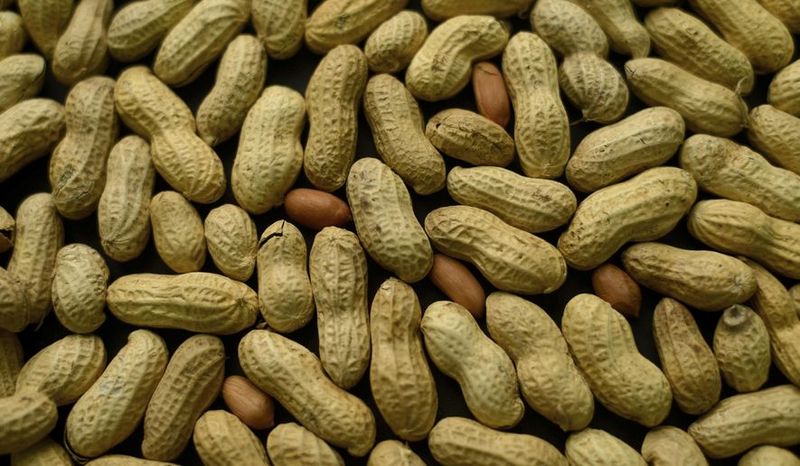 This Feb. 20, 2015, file photo, photo shows an arrangement of peanuts in New York. A study published Oct. 26, 2016, in the Journal of Allergy and Clinical Immunology says nearly half of those treated with a skin patch for peanut allergy sufferers were able to consume at least 10 times more peanut protein than they were able to consume prior to treatment. (AP Photo/Patrick Sison, File)