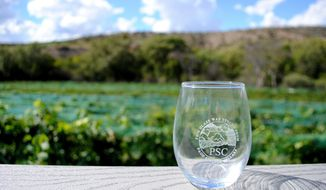 In this Sept. 30, 2016 photo, a glass sits on a deck railing that overlooks rows of syrah, grenache, Traminette, and Seyval Blanc grapevines and comes with the price of a Page Springs Cellars tour is shown in Cornville, Ariz. Less than a half-hour away from Sedona's tourist crowds is an attraction that might surprise out-of-towners: a wine trail, complete with vineyards and tasting rooms, right in the heart of Arizona. The Verde Valley Wine Trail includes seven wineries and eight tasting rooms and is centered in communities like Cottonwood and Cornville. (AP Photo/Yvonne Gonzalez)