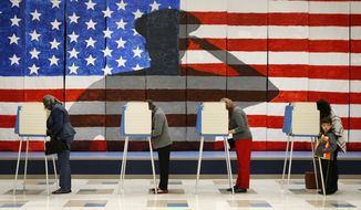 Voters cast their ballots Tuesday at Robious Elementary School in Richmond, Virginia. (Associated Press)