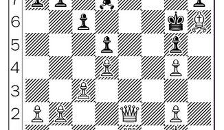 Topalov-Nakamura after 27...fxg5.