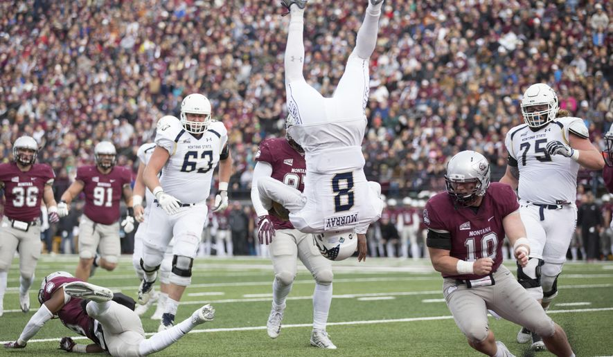 Montana State quarterback Chris Murray (8) flips into the end zone for a touchdown against Montana in the first half of an NCAA college football game Saturday, Oct. 19, 2016, in Missoula, Mont. (AP Photo/Patrick Record)