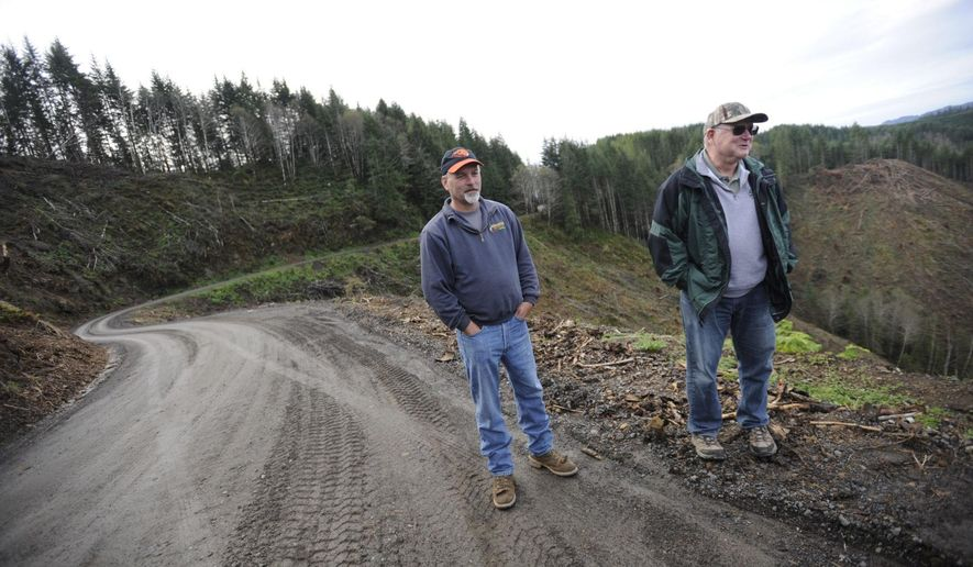 "In this Oct. 27, 2016 photo, Mike Huffman, left, logging superintendent, and Howard ""Butch"" Wright, vice president of operations, at Huffman-Wright Timber and Construction Operations, stand on the edge of a recent clear-cut by the company in the Elliot State Forest near Coos Bay, Ore. The operation is able to cut approximately one acre per day. ""It gets in your blood,"" Wright said of logging. The family company has been in business for 61 years and encompasses four generations of family. (Amanda Loman/The World via AP)"