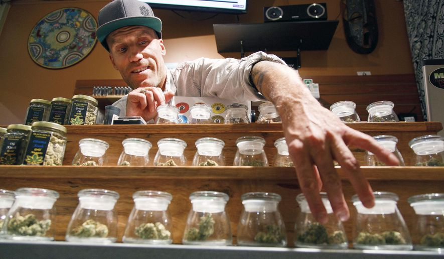 Shane Cavanaugh owns Amazon Organics, a pot dispensary in Eugene, Oregon. White House press secretary Sean Spicer said Thursday that the Justice Department will be looking further into the use of recreational marijuana and enforce the laws on the books. (Associated Press/File)