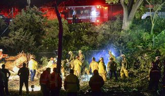 Los Angeles County Fire Dept. firefighters work at the scene where a large tree fell on a wedding party in Whittier, Calif., Saturday, Dec. 17, 2016. One person was killed and five others were injured with a large eucalyptus tree fell on a wedding party taking photographs at a Southern California park Saturday, authorities said. Several people were trapped under the tree at Whittier's Penn Park, the Los Angeles County Fire Department said. (Keith Durflinger/The Whittier Daily News via AP)