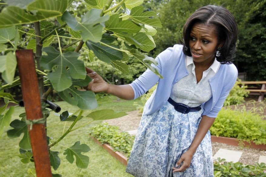 FILE - In this June 5, 2012, file photo, first lady Michelle Obama points out a fig tree as she talks about the White House Kitchen Garden during an interview with The Associated Press, on the South Lawn of the White House in Washington. When Michelle Obama considered the daunting prospect of becoming first lady, she purposely avoided turning to books by her predecessors for guidance. Instead, she turned inward. (AP Photo/Charles Dharapak, File)