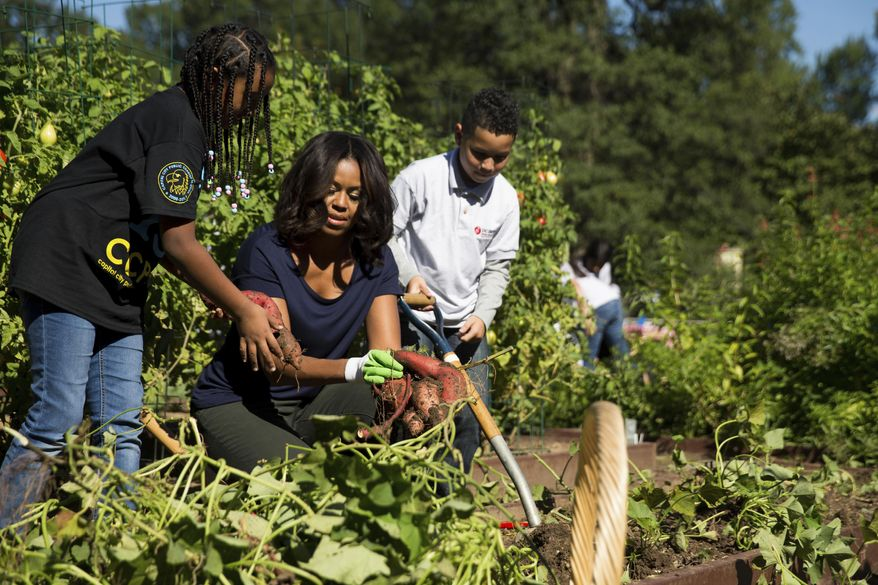 FILE - In this Oct. 6, 2015, file photo, first lady Michelle Obama, joined by school children from Washington area, pick sweet potatoes as they participate in a harvest of the White House Kitchen Garden at the White House in Washington.When Michelle Obama considered the daunting prospect of becoming first lady, she purposely avoided turning to books by her predecessors for guidance. Instead, she turned inward. (AP Photo/Andrew Harnik, File)