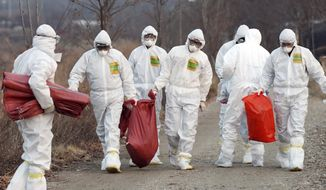 In this Monday, Dec. 26, 2016 photo, health officials wearing protective suits carry a sack containing killed chickens after they were slaughtered at a chicken farm where a suspected case of bird flu was reported in Incheon, South Korea. South Korea's government said Tuesday, Dec. 27, 2016 that about 26 million head of poultry will be culled by Wednesday including about one-third of the country's egg-laying hens after the H5N6 strain of avian influenza was found in farms and parks. (Yun Tae-hyun/Yonhap via AP)