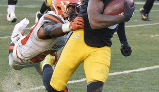 Pittsburgh Steelers wide receiver DeMarcus Ayers (15) gets past Cleveland Browns strong safety Briean Boddy-Calhoun (20) for a touchdown during the second half of an NFL football game in Pittsburgh, Sunday, Jan. 1, 2017. (AP Photo/Don Wright)