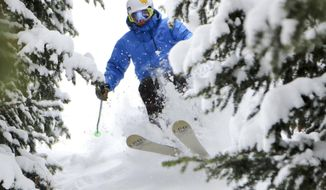 This undated photo provided by Deer Valley Resort in Park City, Utah, shows a skier making his way down a snowy slope through the trees. The luxury resort is a popular destination for stars heading to the annual Sundance Film Festival but it's Deer Valley's untracked snow that advanced skiers prize, with powder stashes in the trees that are about as good as they get. (Eric Schramm/Deer Valley Resort via AP)