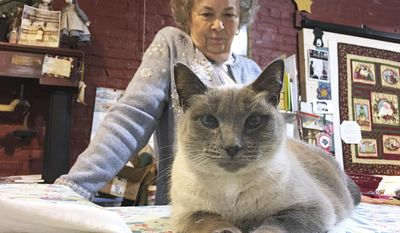 Sweet Blue positions herself on fabric just unrolled by shop owner Rachel Brown at Rachel's Quilt Patch in Staunton, Va., on Dec. 30, 2016.  Brown, who owns Rachel's Quilt Patch in Staunton, decided to make the new kitten a part of the store. She named her Sweet Blue for her piercing blue eyes and let her live in the store.   (Mike Tripp/The Daily News Leader via AP)