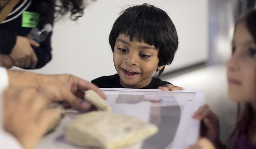In a Tuesday, Dec. 6, 2016 photo, Ajay Selva, 4, gets excited while checking out fossils during a tour of Houston Museum of Natural Science with James Washington, the Houston Museum of Natural Science's most popular tour guide, in Houston.  Washington's tours are a blend of science, jokes and pop culture references. (Elizabeth Conley//Houston Chronicle via AP)