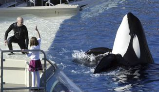 FILE - In this Nov. 26, 2006, file photo, SeaWorld Adventure Park trainer Ken Peters, left, looks to a killer whale during a performance at Shamu Stadium inside the theme park in San Diego. SeaWorld San Diego is ending its controversial and long-running killer whale show. The show that featured orcas cavorting with trainers and leaping high out of a pool ends Sunday, Jan. 8, 2017. (AP Photo/Bizuayehu Tesfaye, File)
