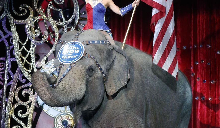 "FILE - In this May 1, 2016 file photo, an Asian elephant performs during the national anthem for the final time in the Ringling Bros. and Barnum & Bailey Circus in Providence, R.I. The Ringling Bros. and Barnum & Bailey Circus will end ""The Greatest Show on Earth"" in May 2017, following a 146-year run. Declining attendance combined with high operating costs, along with changing public tastes and prolonged battles with animal rights groups all contributed to its demise. (AP Photo/Bill Sikes, File)"