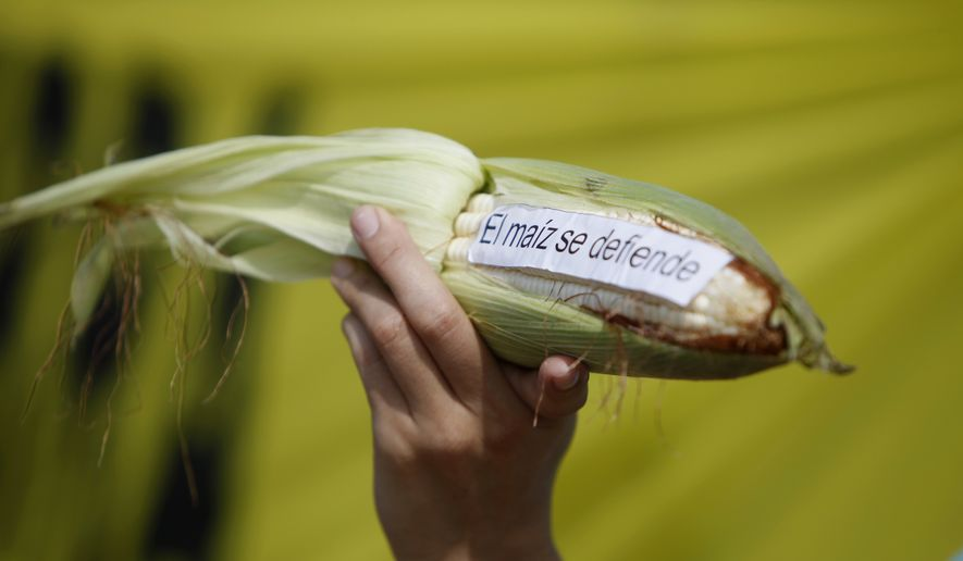 NAFTA critics in Mexico see a silver lining to renegotiating the trade deal with a Donald Trump administration, saying they would like to see protections put in place for Mexican corn, beans, rice and sugar against U.S. exports and that the deal has hurt workers, farmers, unions and the environment. (AP Photo/Eduardo Verdugo, File)