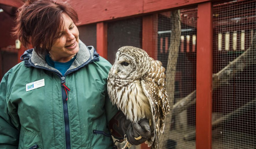 FOR RELEASE SATURDAY, JANUARY 21, 2017, AT 12:01 A.M. MST.-Kelley Stevenson talks with Oberon, a barred owl, at the Nature and Raptor Center of Pueblo, Colo. on Thursday, Dec. 8, 2016. (Stacie Scott/The Gazette via AP)