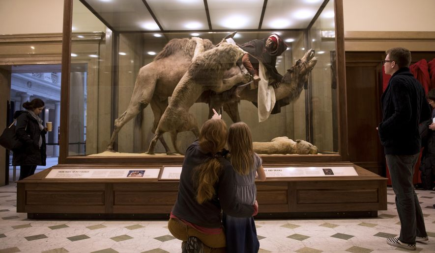 Carnegie Museum Of Art And Natural History Pittsburgh Pa