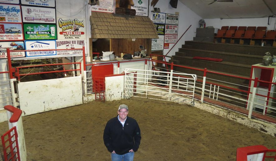 FOR RELEASE SUNDAY, FEBRUARY 5, 2017, AT 12:01 A.M. CST.- Lori Potter, Kearney Hub Alma sale barn manager Matthew Hegamen stands in the sale ring where Tuesday cattle sales that had been suspended in March were restarted in July under local ownership. Alma Commission Company soon will be Alma Livestock Auction LLC and operated similar to a co-op, according to steering committee president.  (Lori Potter/The Daily Hub via AP)