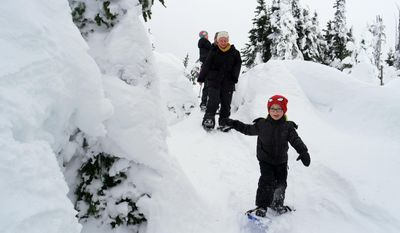 This photo taken Jan. 7, 2017, shows Miles Walton, 4, of Port Angeles, leads his family on a snowshoe walk at Hurricane Ridge, Wash., (Caitlin Moran / The Seattle Times via AP)