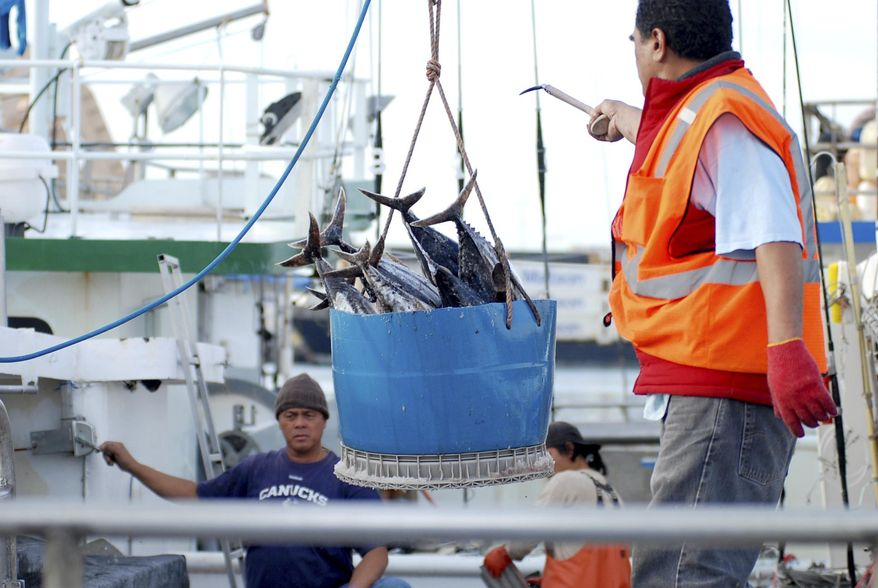 In this Thursday, Feb. 2, 2017, photo, a catch of fish is unloaded from a commercial fishing boat at Pier 38 in Honolulu. Hawaii authorities may have been violating their own state laws for years by issuing commercial fishing licenses to thousands of foreign workers who have been refused entry into the United States, The Associated Press has found. About 700 of these men are currently confined to vessels in Honolulu without visas, some making less than $1 an hour. (AP Photo/Caleb Jones)
