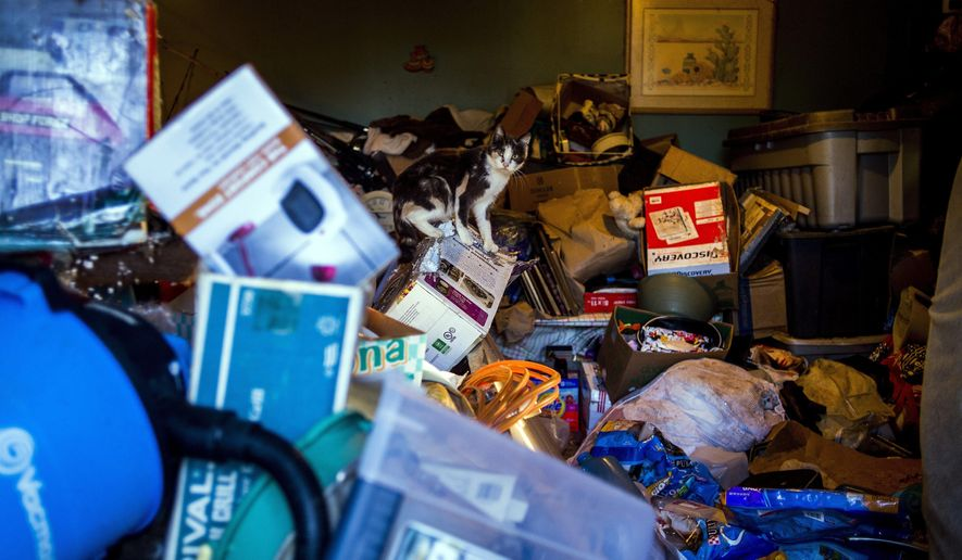 A cat sits on a box at a home on Grand Blanc Road in Gaines Township. Mich., Monday, Feb. 13, 2017. Gaines Township Police and Fire personnel discovered a hoarding situation involving approximately 30 to 70 cats at the house. Animal Control was notified, and is expected to respond to the scene Tuesday morning. (Jake May/The Flint Journal-MLive.com via AP)