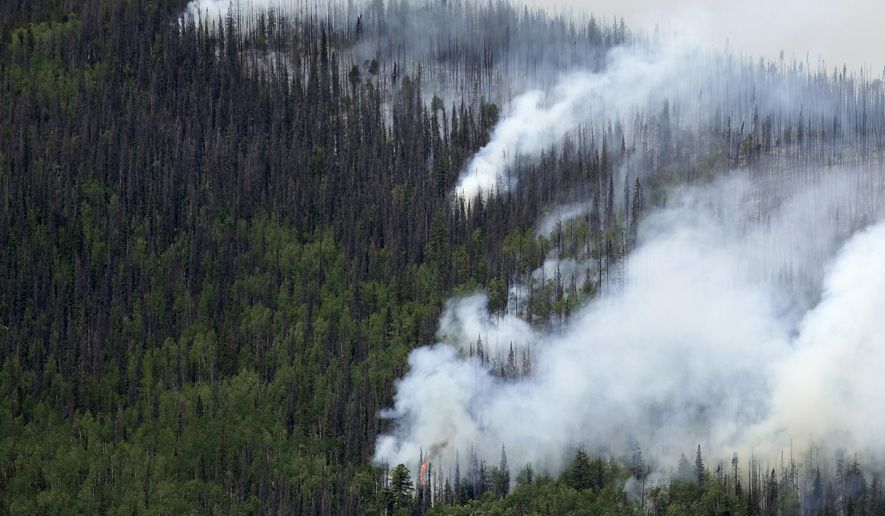 FILE - In this June 24, 2013 file photo, fire-promoting beetle-killed trees mix with live trees as a wildfire burns west of Creede, Colo. Foresters say the number of standing dead trees in Colorado is increasing steadily, threatening to make wildfires worse and to degrade vital water supplies that flow from forested mountains. The Colorado State Forest Service said Wednesday, Feb. 15, 2017 that the state has an estimated 834 million standing dead trees, up nearly 30 percent from seven years ago. (AP Photo/Gregory Bull, File)
