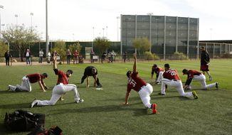 Arizona Diamondbacks catchers stretch during baseball spring training Tuesday, Feb. 14, 2017, in Scottsdale, Ariz. (Rob Schumacher/The Arizona Republic via AP)