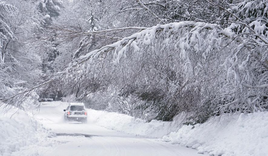 Past a birch tree bowed over under the weight of wet snow, a car travels along Kingsbury Lane in Kennebunk, Maine, on Thursday, Feb. 16, 2016. An overnight winter storm unleashed more than a foot of wet, heavy snow on parts of Maine and New Hampshire by Thursday, closing schools knocking out power and pushing snow tallies to levels unseen in years. (Gregory Rec/Portland Press Herald via AP)