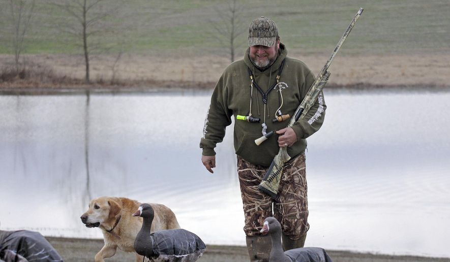 In this Jan. 18, 2017 photo, Garrett Wilson and his bird dog Duke stroll back to their  goose blind during a hunt in Unlin, Ill. Garret and the Wilson family, have hunted together as a family for decades, noted that the birds had been following the same pattern from several days. (Les Winkeler/The Southern, via AP)