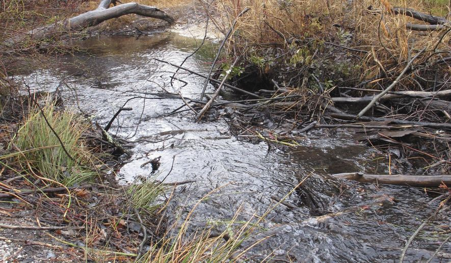 FILE - In this Jan. 6, 2014, file photo, water flowing through a stream in Lakehurst, N.J., part of the ecologically sensitive Pinelands region. On Monday, Feb. 27, 2017, the US Geological Survey released a study showing that pollution levels have declined or remained constant in most New Jersey streams over the last 40 years, even as levels of salt increased due to runoff from roads and highways. (AP Photo/Wayne Parry, File)