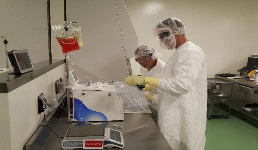 In this May 2016 photo provided by Kite Pharma, cell therapy specialists at the company's manufacturing facility in El Segundo, Calif., prepare blood cells from a patient to be engineered in the lab to fight cancer. The experimental gene therapy, called CAR-T cell, turns a patient's own blood cells into specialized cancer killers and worked in the study, with more than one third of very sick lymphoma patients showing no sign of disease six months after a single treatment, its maker said Tuesday, Feb. 28, 2017. (Kite Pharma via AP)