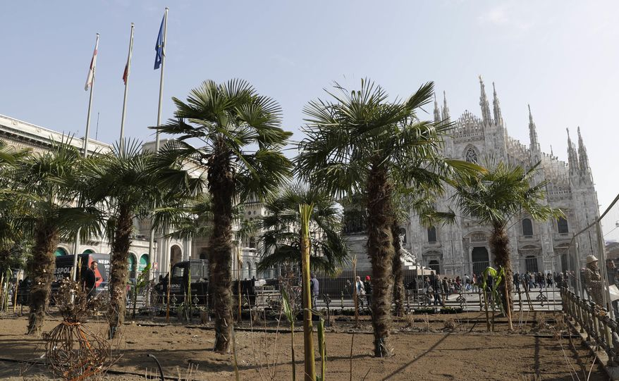 In this image taken on Monday, Feb. 27, 2017, palm trees are planted in a flowerbed in front of Milan's gothic-era Duomo Cathedral, subsidized by Starbucks cafeteria chain for the next three years in Milan, Italy. Longtime CEO Howard Schultz's vision for Starbucks was largely inspired by the Milan coffee bars he experienced on his first trip to the northern Italian city in 1983. Schultz will continue on with the company to open ''the quintessential Roastery'' in Milan by the end of 2018. (AP Photo/Luca Bruno)