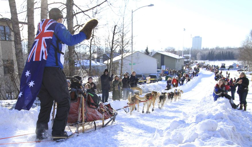 This March 1, 2014, photo shows musher Christian Turner, of Dorrigo, Australia, wearing an Australian flag and waving to fans along the Cordova Street hill during the ceremonial start of the 2014 Iditarod Trail Sled Dog Race in Anchorage, Alaska. This year's ceremonial start will be held Saturday, March 4, 2017, in Anchorage, Alaska, but the actual start will come two days later in Fairbanks after low snow conditions in the Alaska Range forced the start from the Anchorage area and over the range to Fairbanks. (AP File Photo/Dan Joling)