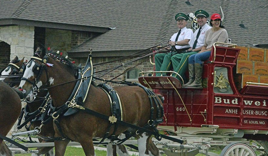 In this photo taken March 2, 2017 Leandra Ruiz was one of two lucky residents of the Valley who was taken a special delivery from the Budweiser Clydesdales at their home. She was also given a ride around her neighborhood on the red Budweiser carriage. (Raul Garcia /Valley Morning Star via AP)