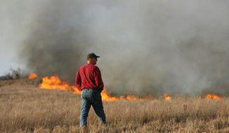 John Wildin watches as a wildfire burns Sunday, March 5, 2017, in Hutchinson, Kan. Interim Hutchinson Fire Department Chief Doug Hanen says fire crews are working to control numerous hot spots in the fire. (Lindsey Bauman/The Hutchinson News via AP)