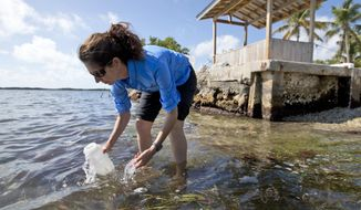 In this, Tuesday, Feb. 7, 2017 photo, Sarah Egner, director of curriculum development at Marinelab in Key Largo, Fla., takes a water sample to check for the presence of microscopic plastics in the water. Gulf Coast researchers are preparing to launch a two-year study to see what kinds of microscopic plastics can be found in the waters from south Texas to the Florida Keys. The project will expand a year's worth of data collected around the state of Florida that predominantly found microfibers, shreds of plastic even smaller than the microbeads targeted by a federal ban. (AP Photo/Wilfredo Lee)