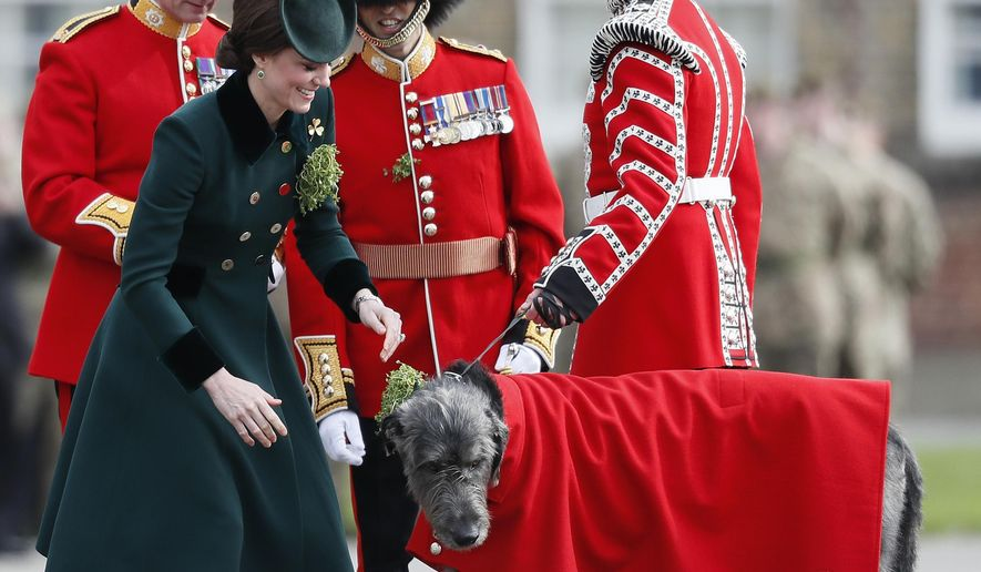 Britain's Kate, The Duchess of Cambridge, smiles after she presenting a shamrock to Domnhall the Irish Wolfhound Mascot, at the St. Patrick's Day Parade at the Cavalry Barracks in Hounslow, London, Friday, March 17, 2017. Their Royal Highnesses visited to present shamrocks to the Officers and Guardsmen of the 1st Battalion Irish Guards. (AP Photo/Kirsty Wigglesworth)