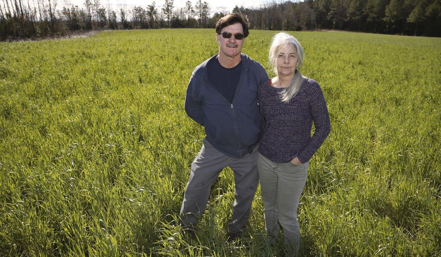 ADVANCE FOR MONDAY, MARCH 20, 2017 - In this March 8, 2017 photo, Stuart Lane, left, and his wife Kathy Lane stand in one of their Caroline County fields in Va. Lane uses cover crops such as rye and crimson clover to add nutrients to the soil before planting soybean crops. Caroline County is second among the state's top grain-producing counties for both corn and soybeans. (Suzanne Carr Rossi/The Free Lance-Star via AP)